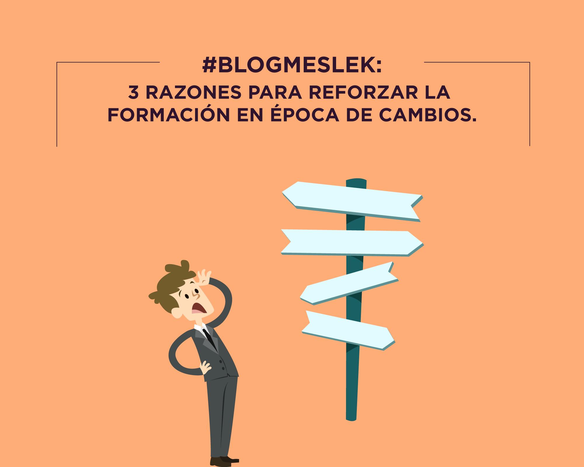 #BlogMeslek: 3 razones para reforzar la formación en épocas de cambios
